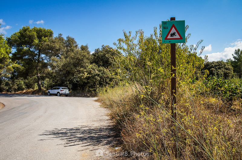 Señal de tráfico en la carretera del Parc dels Talls