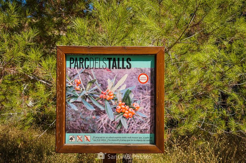 Panel informatico del Parc dels Talls de camino al mirador inferior del Pèlag Gran