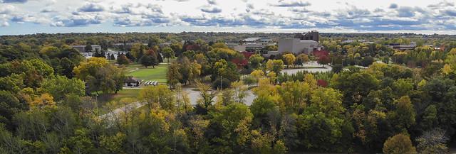 Fall Foliage Starting at Cofrin Memorial Arboretum