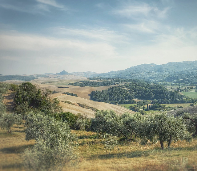Tuscan picture postcard...