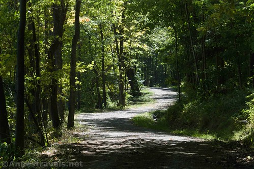 A curvy section of the Old Haul Road around Canadice Lake, New York