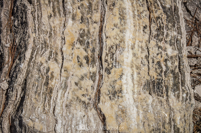 Mineral de yeso en el Pèlag Gran