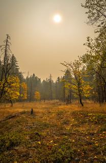 Packwood, Washington - Forest Fire Haze - September 2020