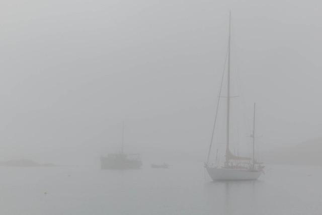 Mistake in fog