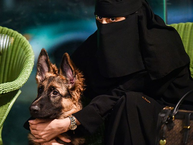 5770 The first dog café of Saudi Arabia opens in Khobar 04