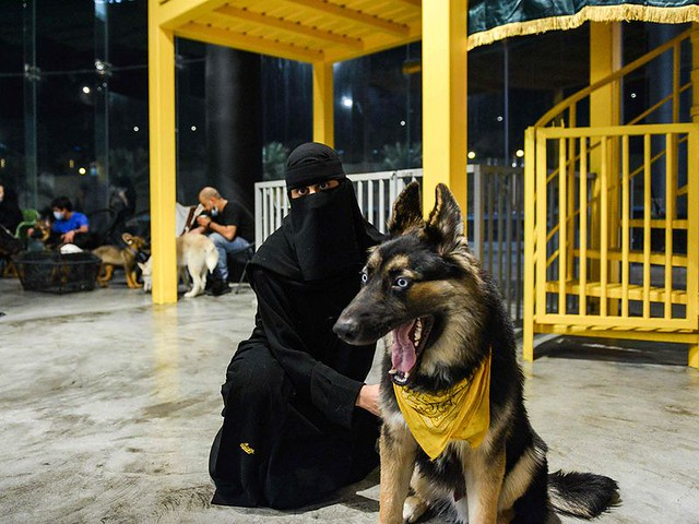 5770 The first dog café of Saudi Arabia opens in Khobar 06