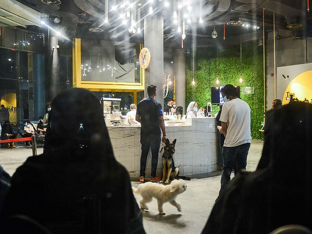 5770 The first dog café of Saudi Arabia opens in Khobar 07