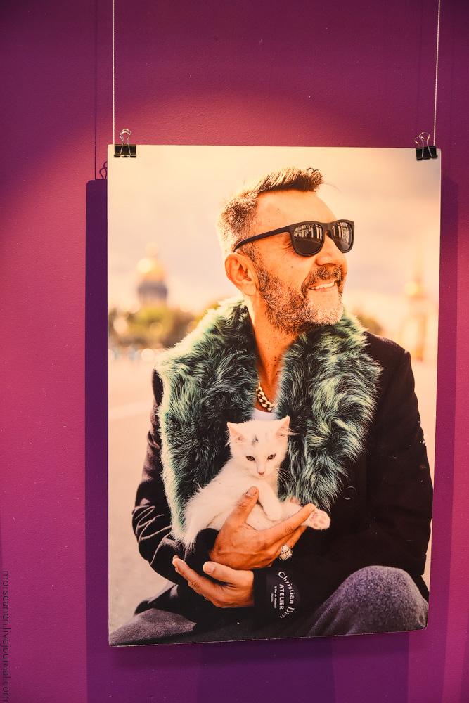 CatsCafe-(4)