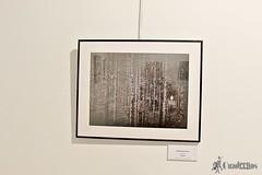 exposicion-fotografias-verum-tomelloso (23)
