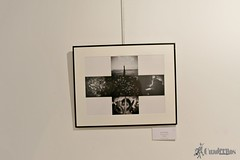 exposicion-fotografias-verum-tomelloso (16)