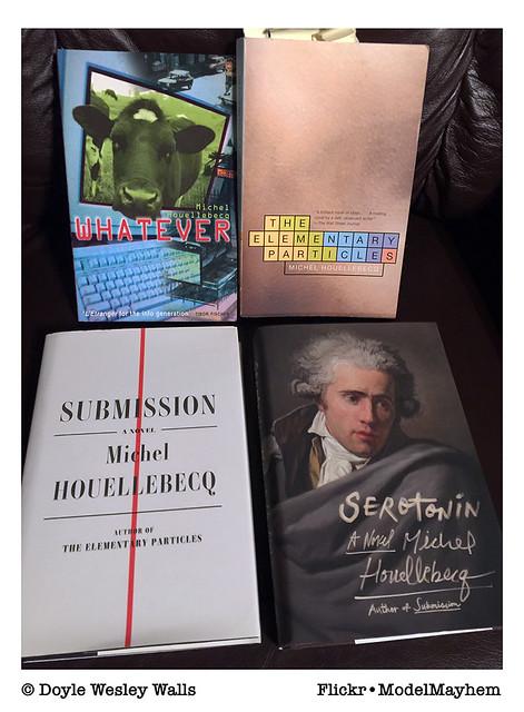 Michel Houellebecq, Four Novels