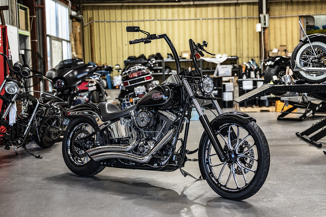 Zane's Softail Custom