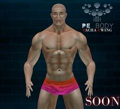 PE Mesh Body (PACHA Ewing)