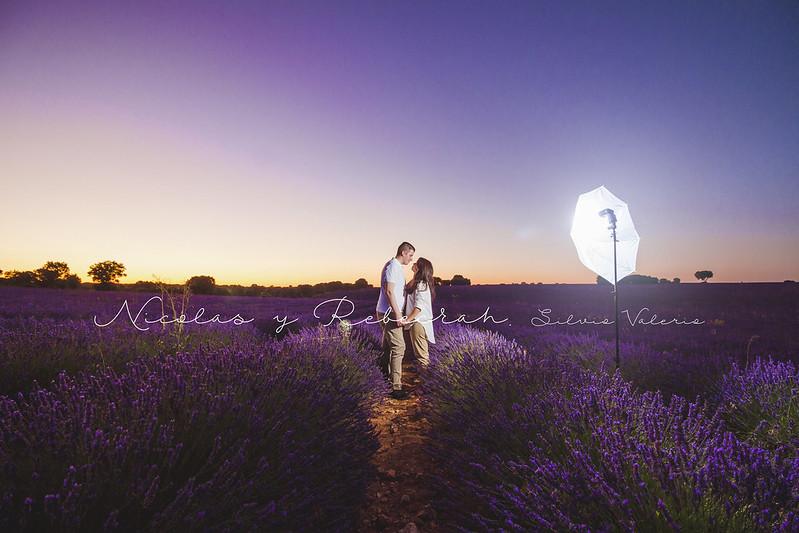 Love at lavender (Brihuega, Spain)