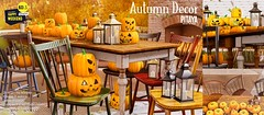 Pitaya - Autumn decor @ HW!