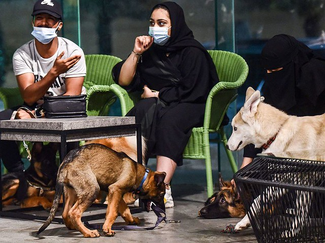 5770 The first dog café of Saudi Arabia opens in Khobar 02