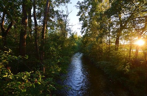 germany deutschland bayern bavaria oberschleisheim schwebelbach sunset sonnenuntergang stream streamlet creek bach trees bäume water wasser flowing fliesend nature natur regattastrecke ©allrightsreserved