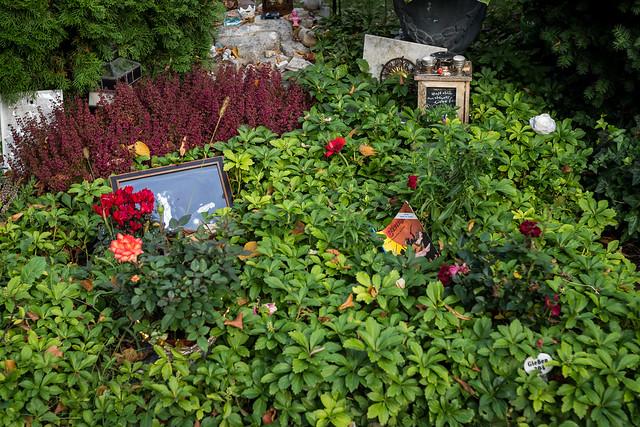 Grab von Rio Reiser - Alter St.-Matthäus-Kirchhof Berlin