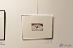 exposicion-fotografias-verum-tomelloso (21)