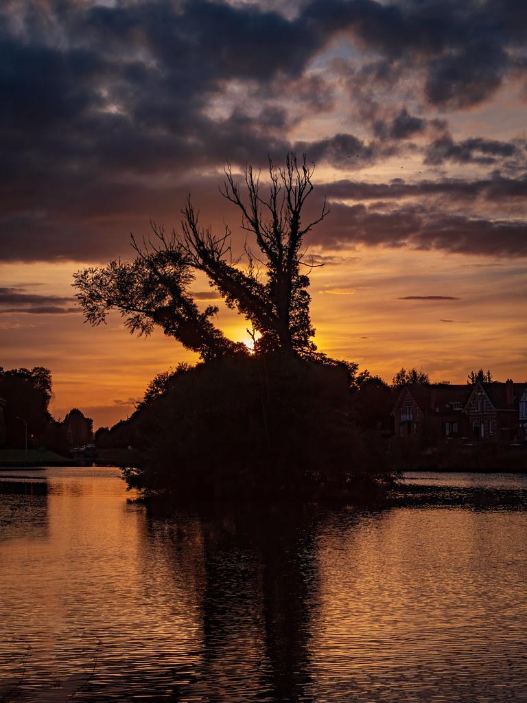 Une île sur l'Oise... 50411044833_44f4e24100_b