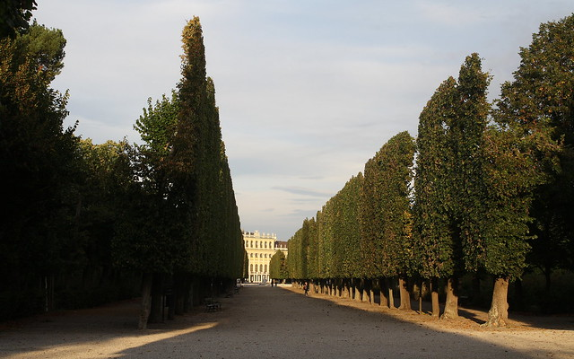 Schönbrunn in the Evening Sun