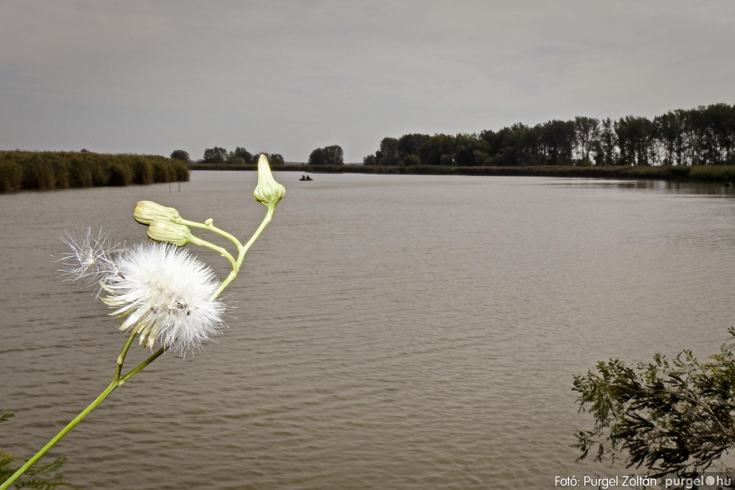 033 2020.10.03. Horgászverseny a Lándoron - Fotó: Purgel Zoltán© _DSC2946q.jpg