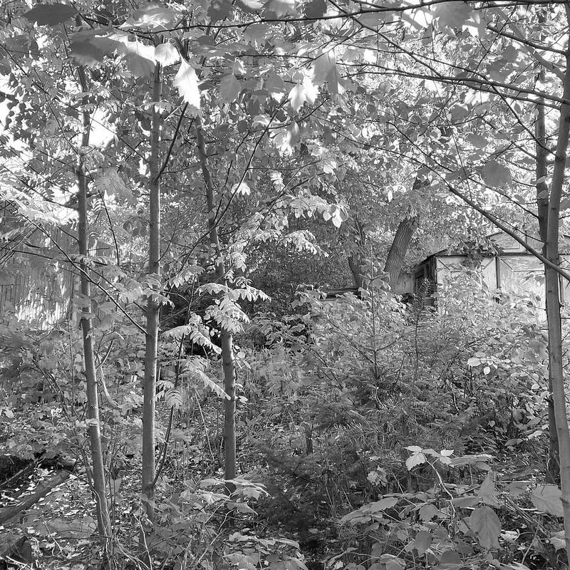 Печерская в сентябре