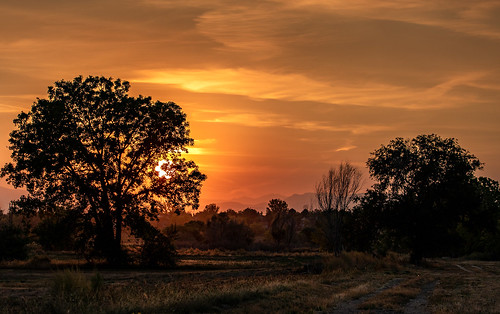 bigvern canon 7dii smoke red sunset denver colorado mountains silhouette trees