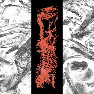 """A Virtual Memory """"The Burning Giraffe"""" - Album Teaser Promo Flyer"""