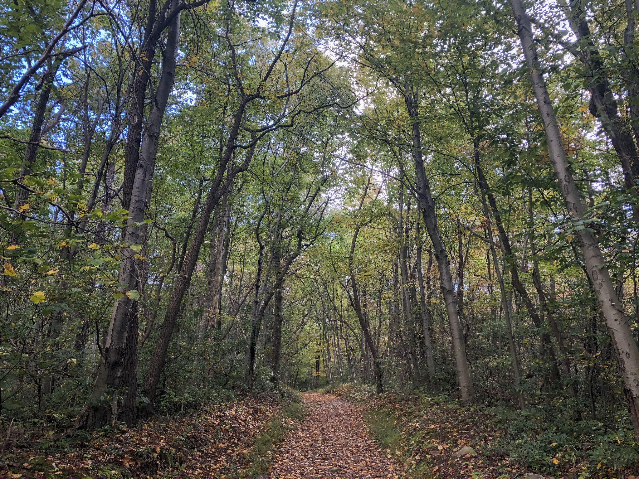 October 2 2020 Hike