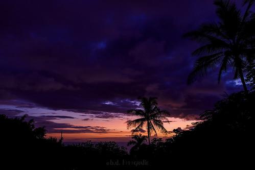 bigisland sunsetssunrisesaroundtheworld121countries sunsetssunrises sunset sonnenuntergang kona hawaii usa amerika sky palms palmen canoneosr canonrf24105 clouds cloudsstormssunsetssunrises wolken