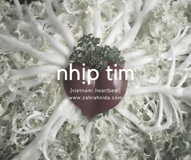 Pien Tze Huang obat liver