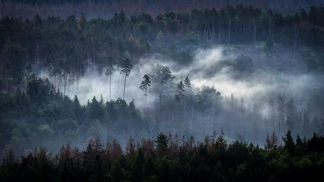 The fallen cloud - Die gefallene Wolke