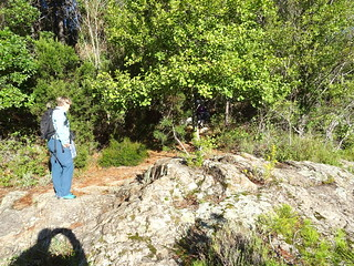 Nettoyage en rive droite du Cavu
