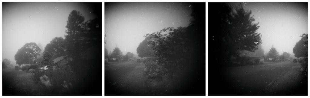 Foggy Morning Break Dawn