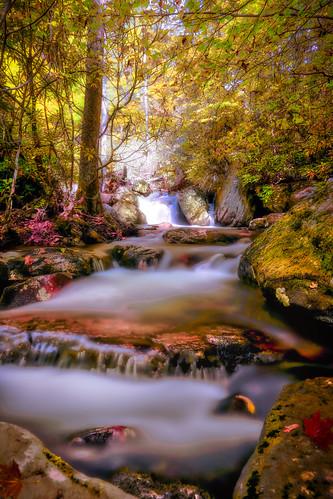 jefferson national forest cascade falls blacksburg virginia autumn fall colors waterfall hik hiking sony a7riv 1635f4 beautiful scenery fairytale
