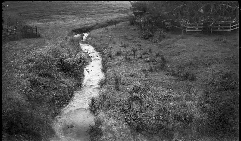creek, rolling farmland, pasture, Candler, NC, Kochmann Korelle folding 127 film camera, Kodak TMAX 400, HC-110 developer, 10.1.20