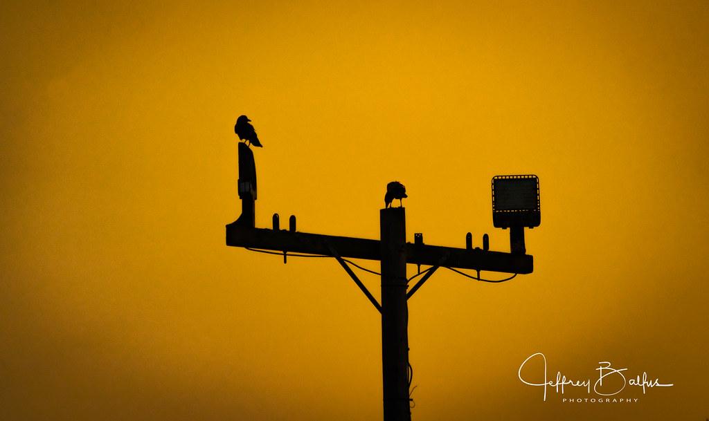 Sunset watchers in Explore Oct 6, #146
