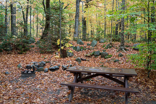 Our Abol campground campsite #18.