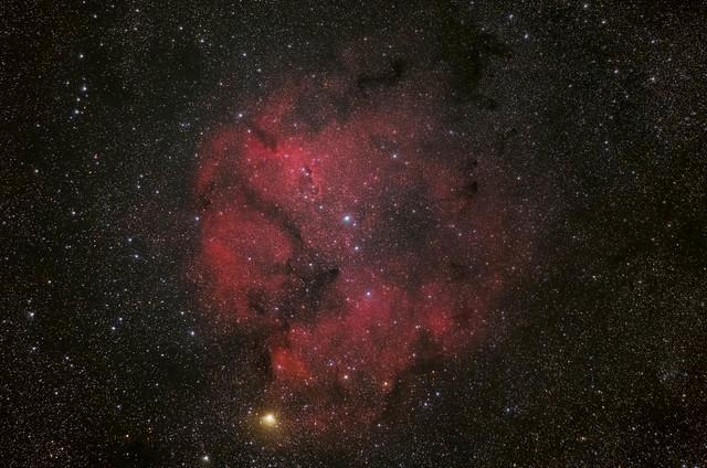 IC1396 + Elephant Trunk Nebula