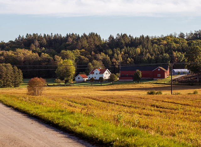 Farm in october sun