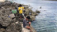 17.11.03  Tonga 15