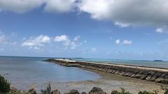 17.11.03  Tonga 16