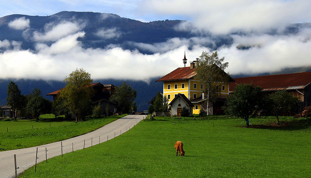 A serene life at the foot of the Alps