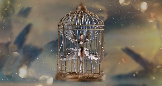ღ057 - Cage Soul
