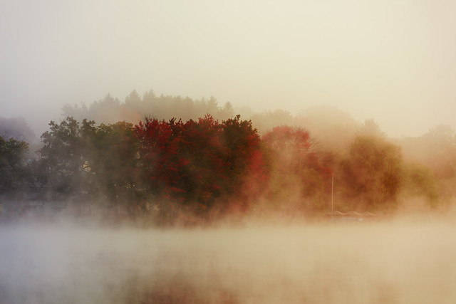 Changing Colors Through The Mist