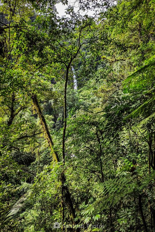 La Catarata Río Fortuna desde el camino