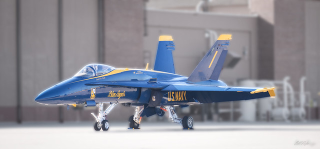 Blue Angel in Wait