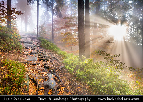 Czech Republic - Bohemian Switzerland National Park - České Švýcarsko - Magical Autumn Morning