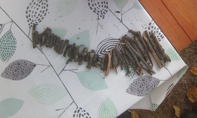 river of sticks
